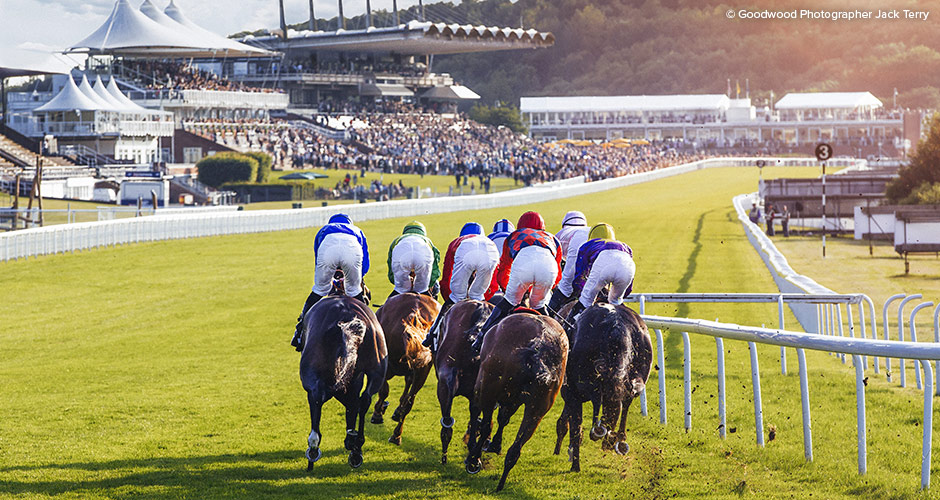 Horse racing at nearby Glorious Goodwood