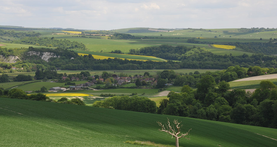 The South Downs National Park on our doorstep